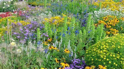 Pflanzen Mit Biosiegel Für Balkon Und Garten