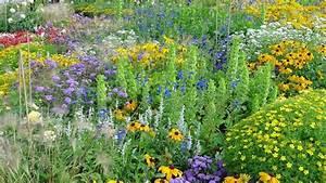 Pflanzen Bewässern Mit Plastikflasche : pflanzen mit biosiegel f r balkon und garten bund e v ~ Frokenaadalensverden.com Haus und Dekorationen