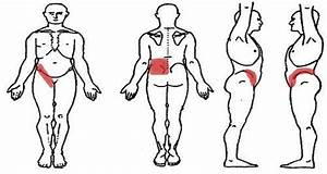 Kidney Pain Location In Men