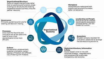 Organizational Virtual Organization Dexterity Current Crisis Process