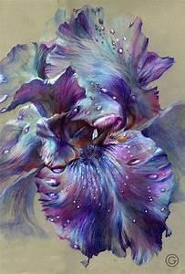 quot iris quot color pencil 3248 2014 by oksana gatalskaya With amazing nuance de couleur peinture 12 tableau de fleur bleues
