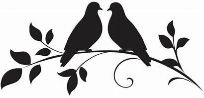 Silhouette Birds Doves Dove Clip Clipart Bird