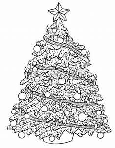 Tannenbaum Schwarz Weiß : christbaum sammelaktion tg g nningen 1919 e v ~ Orissabook.com Haus und Dekorationen