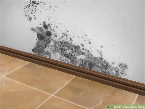 Kill Black Mold In Shower by The Best Ways To Kill Black Mold Wikihow
