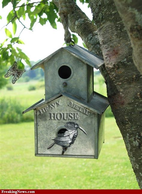 birdhouses images  pinterest bird feeders