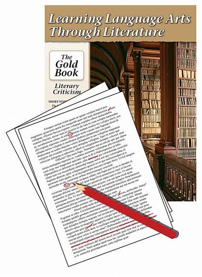 Essay Literary Criticism Assessment P229