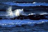 File:Pacific ocean 5.jpg - Wikipedia