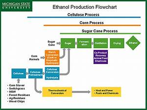 Note That Large Scale Biomass Production For Alternative