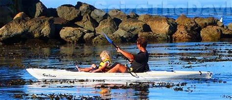 Paddle Boats Monterey Ca by With Your In Monterey Such As Kayak The