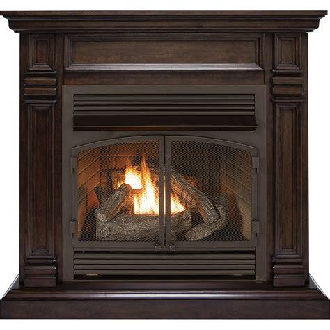 Natural Gas Fireplace Insert Aifaresidencycom