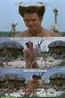 79 Best Ace Ventura: Pet Detective images   Jim carrey ...