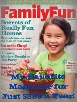 Family Fun Magazine Up To A 3year Subscription For $299