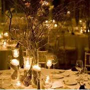 Winter Wedding Ideas On A Budget Weddings By Lilly Low Budget Wedding Reception Decoration Ideas DIY Wedding Decoration Ideas Budget Brides Guide A Wedding Blog Backyard Wedding Decoration Ideas On A Budget Apartment Design Ideas
