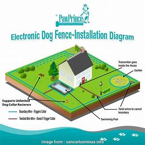 Invisible  Fence Wiring Diagram Simple Electric  Fence