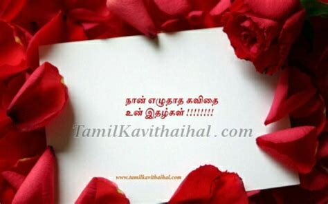 rose love feel kavithigal  quotes  tamil