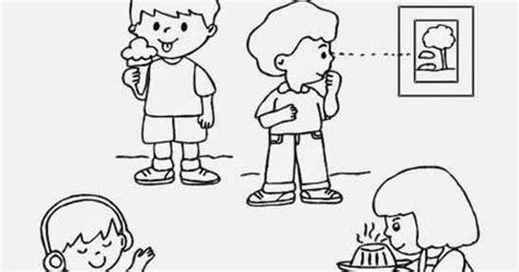 Reforzando aprendizajes: Los sentidos: Ficha de los