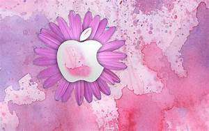 Mac OS - Pink (Color) Wallpaper (22239244) - Fanpop