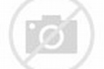Muscle, Inc.: How Dany Garcia Built Her Body and an Empire ...