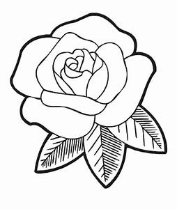 Simple Rose Outline Drawing | www.imgkid.com - The Image ...