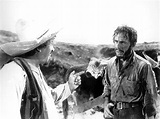 The Treasure of the Sierra Madre (1948) - Blog - The Film ...
