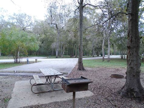 brazos bend state park premium campsites water   amp electricity texas parks wildlife