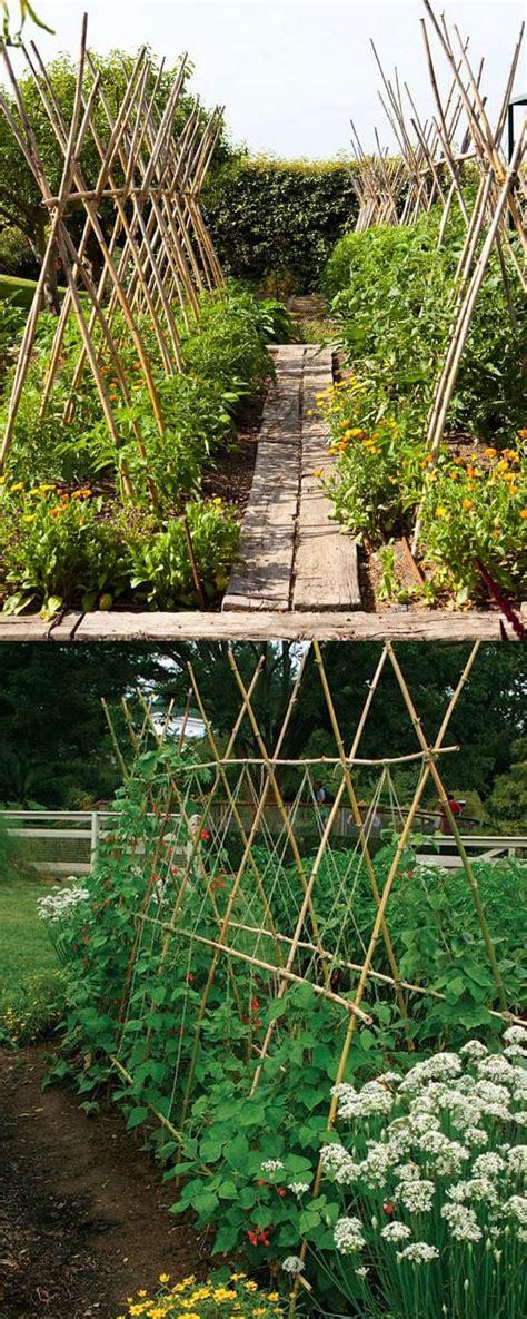 Garden Trellis by 21 Easy Diy Garden Trellis Ideas Vertical Growing