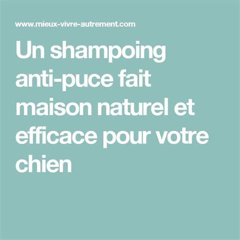 25 best ideas about anti puce on anti puce chat anti puce maison and anti puce