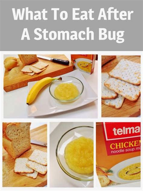 what to eat after a stomach bug discovering healthy