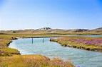 Zeelandic Flanders stock image. Image of tide, zeeland ...