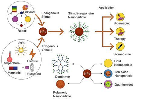 Schematic diagram of stimuli-responsive nanomaterials used for...   Download Scientific Diagram