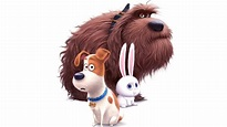 THE SECRET LIFE OF PETS Characters Trailer - YouTube