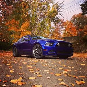 Photoshop help?? - Ford Mustang Forum