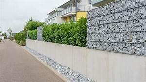 Natürlicher Sichtschutz Garten : sichtschutz im garten so wird das grundst ck zur privatsph re ratgeber ~ Watch28wear.com Haus und Dekorationen
