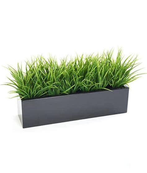 grass bush  trough planter premium outdoor quality