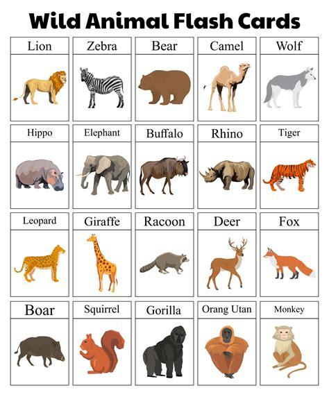 10 Best Free Printable Animal Flash Cards