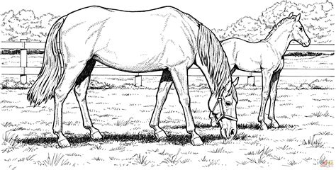 printable realistic horse coloring pages coloring home