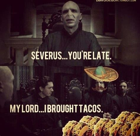 Harry Potter Christmas Meme - 17 best images about harry potter on pinterest smosh mean girls and harry potter humor