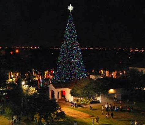 christmas tree lighting in delray 100 foot christmas tree