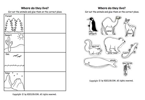 heres  page  students  sort animals