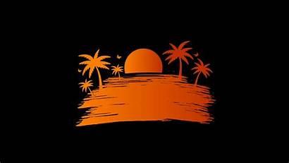 Vector Sunset Palm Sun Background 4k 1080p
