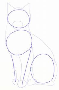 How to draw Realistic Cats, step 3 | mačka, pevac itd ...