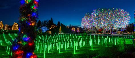 brew lights at zoo lights blossoms of light zoo lights 2017 our community now at