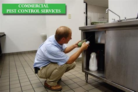 Pest Control Bangalore  Pest Control Services  Pest. Taxes And Bankruptcy Chapter 7. Allergic Reaction Rash Remedies. Insurance Agent E&o Coverage. Create Your Own Website Domain. Cheap Online Mba Programs No Gmat. Assisted Living In Winston Salem Nc. Liberty Home Protection Cfp Financial Planning. Stein Mart Credit Card Payment Online