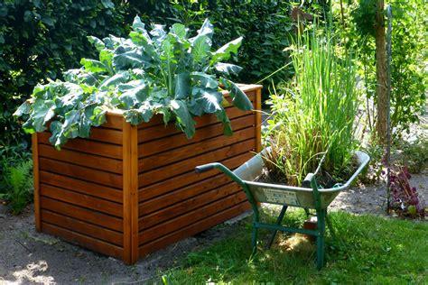 Bepflanzen Eines Hochbeetes by Worauf Sie Beim Hochbeet Anlegen Achten Sollten Andrea S