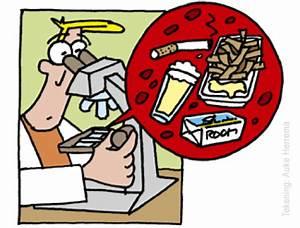 Ldl cholesterol waarde te hoog