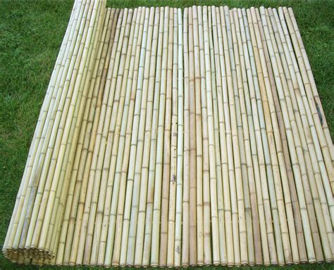 pictures of bamboo fences bamboo grove photo bamboo fence rolls