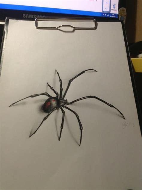 drawn spider realistic pencil   color drawn spider