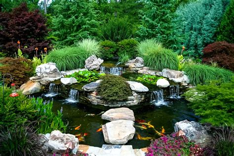 koi pond landscaping water features artistic landscapes