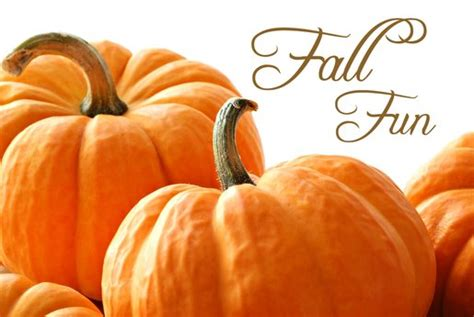 Montgomery County's Guide To Fall 2014