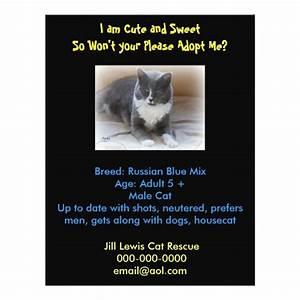 dog adoption flyer template - cat adoption template flyer zazzle